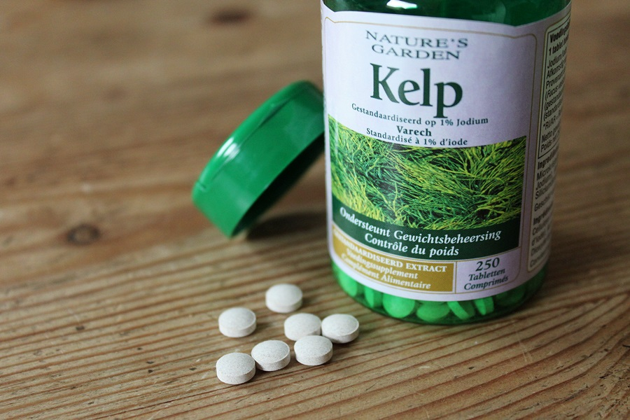 kelp holland barrett